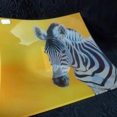 Glasschale mit Zebra
