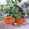 Kerzenhalter_gruen_und_Orange_1.0.JPG